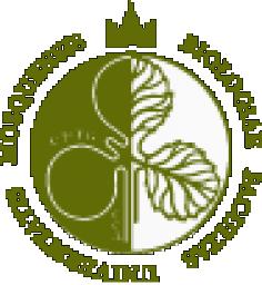 Универсиада «Ломоносов» по современным проблемам биологии